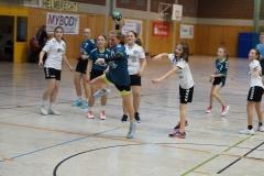 23.11.19 - weibl. D - HSV Hochfranken