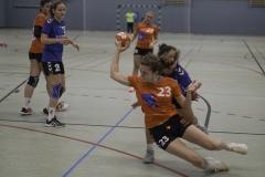 20191027_Damen-I-gegen-HC-Bamberg_0014